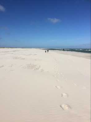 skagen-strand1.jpg